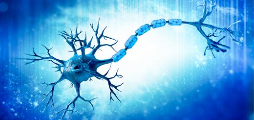 Rencontres de neurologie 2016