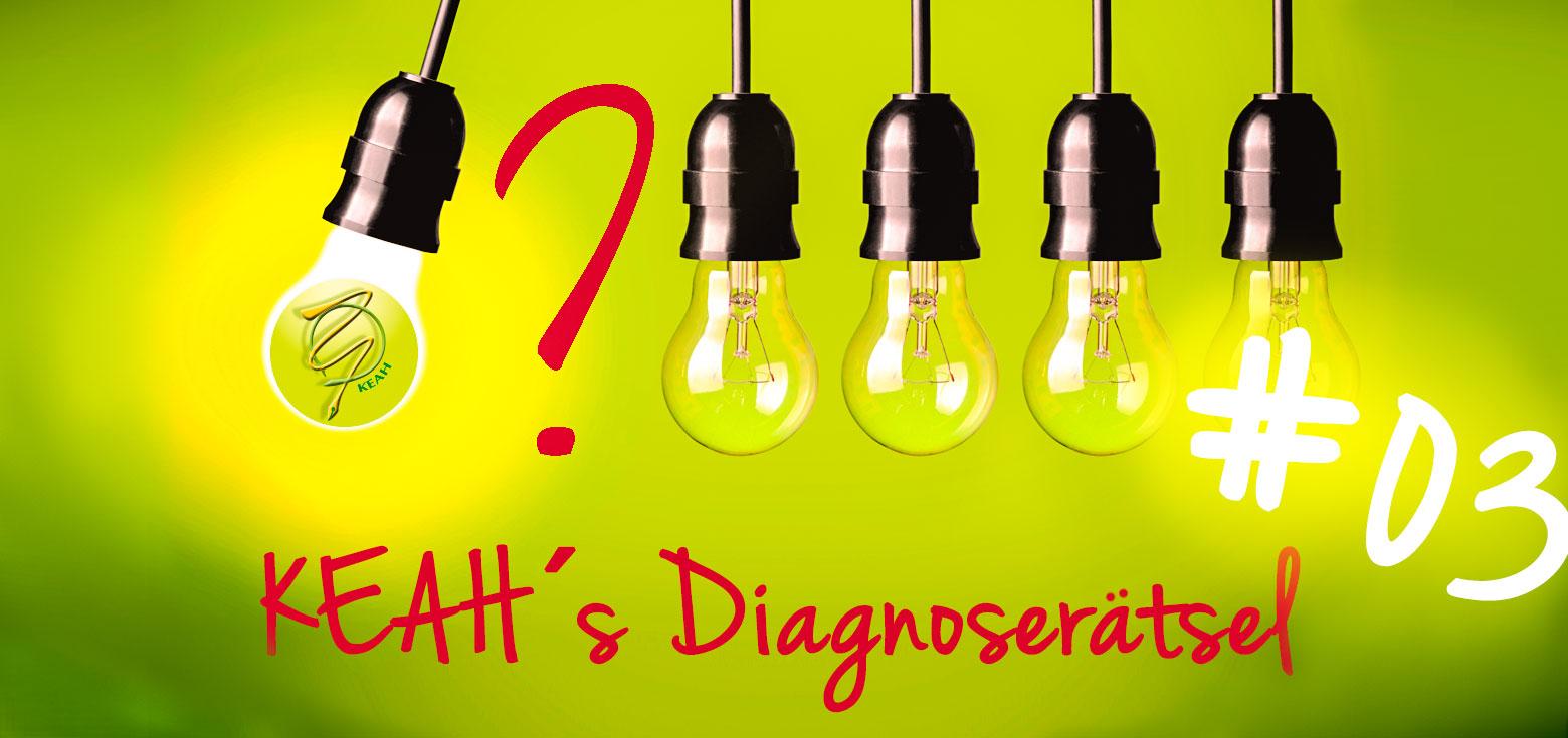 KEAH´s Diagnoserätsel